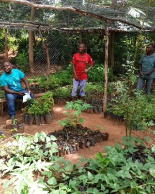 ETP visiting a tree nursery to check up on progress [Credit: ETP]